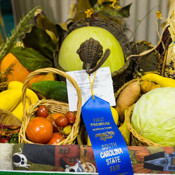A large assortment of vegetables including tomatoes, cabbage, sweet potatoes, yellow squash and multi-colored corn, all in a cornucopia with a blue fair ribbon attached.